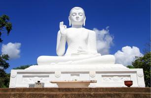 À la découverte du Nord du Sri Lanka version Luxe