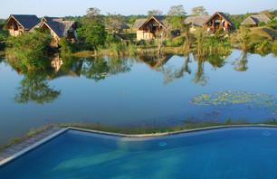 De Sigiriya à Negombo, retour à la nature au Sri Lanka