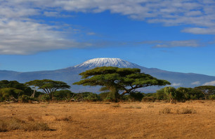 Trésors de Tanzanie
