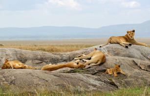 La Tanzanie sous toutes les coutures