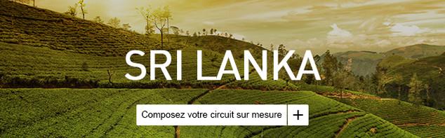Circuit sur mesure au Sri Lanka